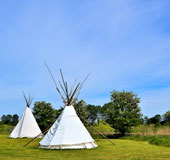 Wigwams in a green field on a summers day